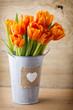 Obrazy na płótnie, fototapety, zdjęcia, fotoobrazy drukowane : Tulip.