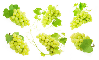 Grapes branch set isolated on white background