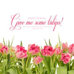 Frühlingshintergrund mit Tulpen