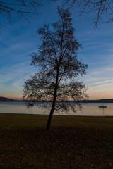 Angera, Lago Maggiore ,  Varese , Lombardia , Italia