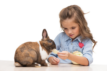Cute girl feeding bunny with cabbage