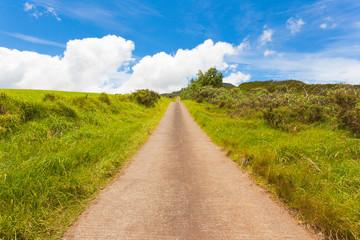 chemin bétonné, campagne, Plaine des Cafres, Réunion