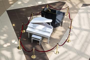 Black and white grand pianos