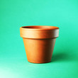 flower pot isolated on green