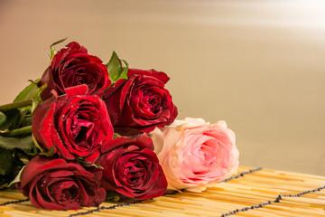 Closeup Roses 3