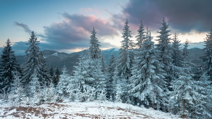 Landscape with winter trees, snowy mountains and clouds
