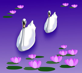 Swans in a Lily Pond