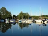 Segelboote am Achterwasser - Insel Usedom - Ostsee