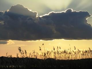 Sonnenuntergang am Achterwasser -  Insel Usedom - Ostsee