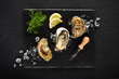 Leinwanddruck Bild - Fresh oysters on a black stone plate top view