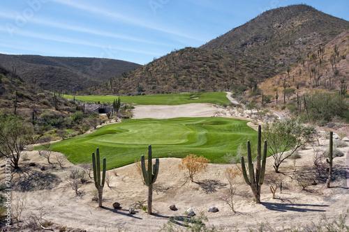 Fotobehang Golf desert golf course green