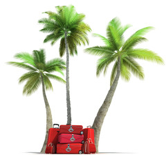 Tropical trip and elegant red luggage