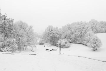 winter city park in morning