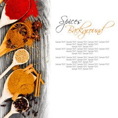 Spice spoons