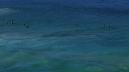 Surfing at Bondi beach, Sydney
