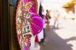 Pink Sombrero - 78346537