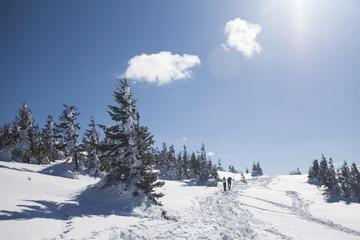 Peoples walking in magic winter landscape