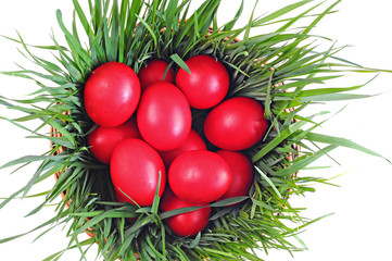 Red eggs on green grass, wooden basket; Easter tradition