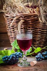 Taste of red wine straight from the demijohn