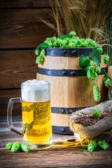 Golden color of light beers