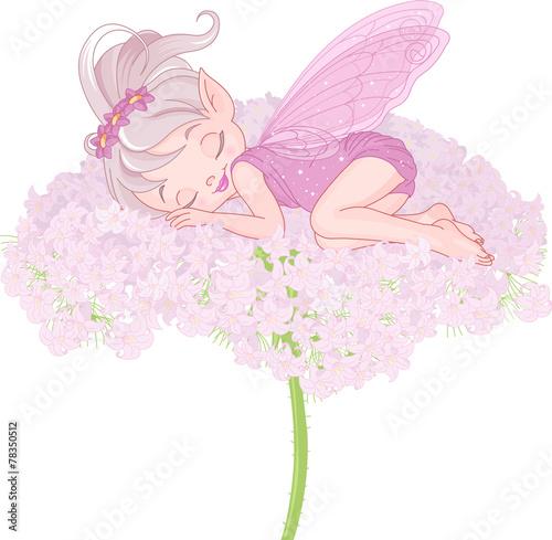 Sleeping Pixy Fairy - 78350512