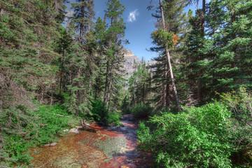 MT-Glacier National Park -creek