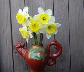 daffodils  in a vase on a wooden background gray boards
