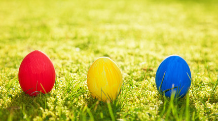 Colored easter eggs on green meadow