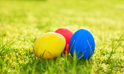 Colored easter eggs on meadow