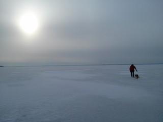 Skater on the frozen lake