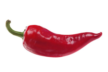 Red chilli pepper on white