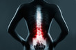 Leinwandbild Motiv The lumbar spine is highlighted by red colour