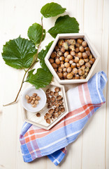 fresh hazelnut with leaves. autumn food.