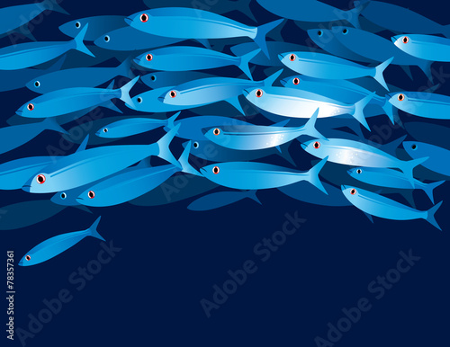Shoal of fishes - 78357361