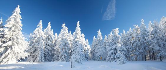 Winterpanorama © Jenny Sturm