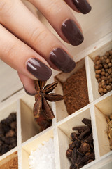 Brown manicure and set of spices.