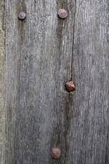 Porte ancienne en bois et clous de fer / #2