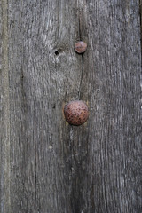 Porte ancienne en bois et clous de fer