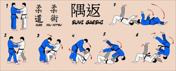 Judo Martial art technique.