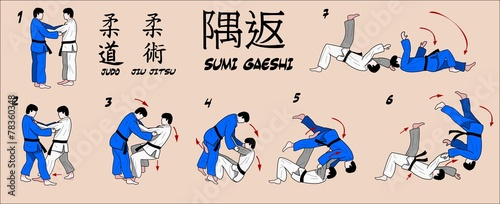 Judo Martial art technique. - 78360348