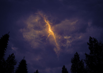 Stormy sky above forest
