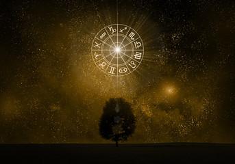 Zodiac signs tree silhouette