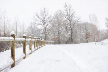 nieve paisaje