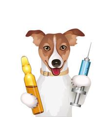 Hund mit Spritze und Ampulle