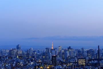 池袋から望む東京タワーと高層ビル群