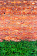 Green bushes on the brick wall background