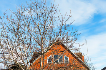 blue sky and brick rural house in spring