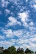 canvas print picture - Wolken am blauen Himmel