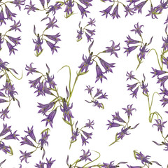 Bluebell pattern