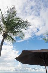 椰子の木とビーチパラソル